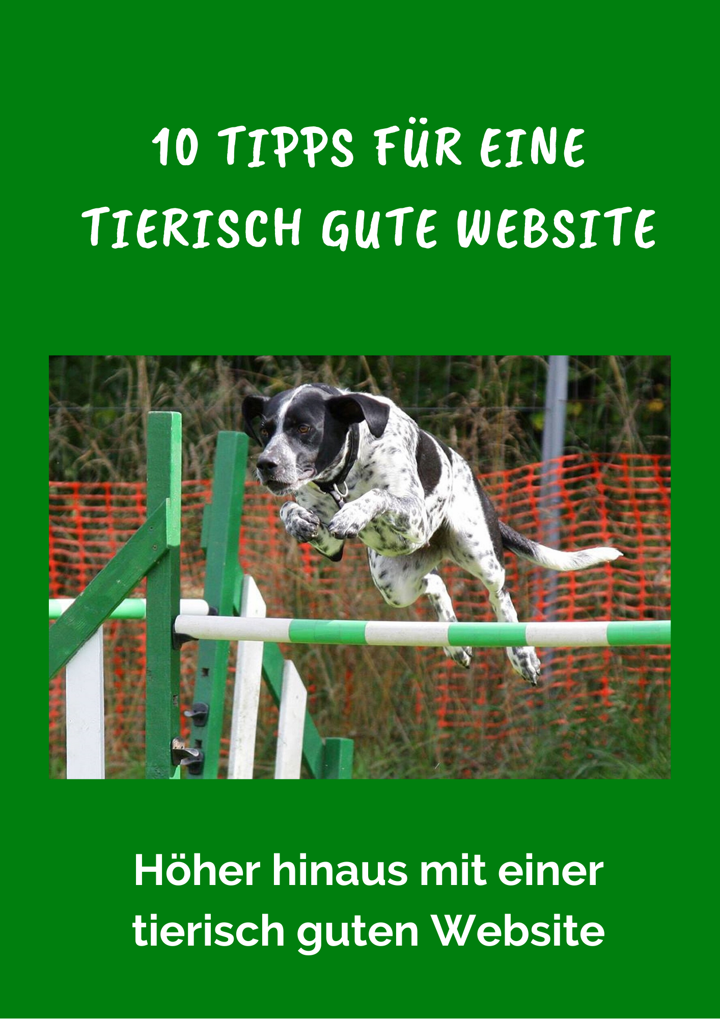 Website Tipps